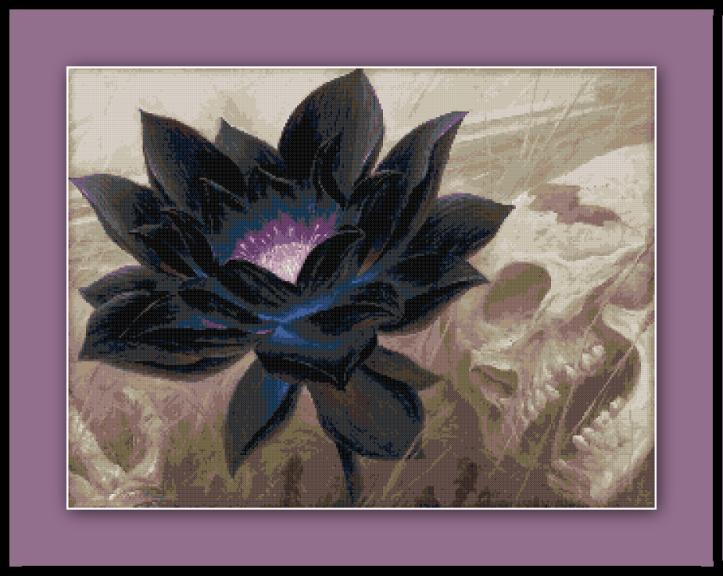 lotus-preview